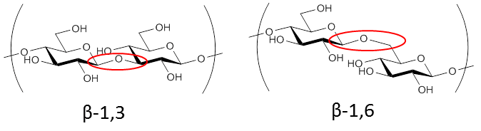 1,3 1,6 Beta glucan structure