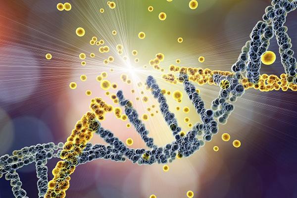 DNA damage AS 600x400 1